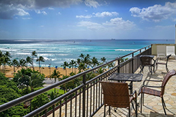 pet friendly by owner vacation rentals dog friendly vacation rentals in waikiki