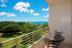 pet friendly by owner vacation rental, dog friendly by owner vacation rental in waikiki hawaii